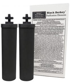 , Berkey PF-2™Fluoride & Arsenic Reduction Filters for Black Berkey Filters (Set of 2), Rapid Survival, Rapid Survival